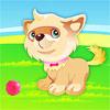 Aranyos kiskutya Dressup játék
