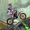 Dzsungel Moto próba játék